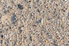 Fragments de coquilles de mer sur le sable photo libre de droits