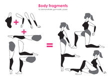 Free Fragments Of Body For Demonstrating Gymnastic Poses.Vector Silho Stock Images - 75578934