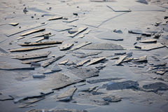 Fragments of thin ice. On the river in late winter Stock Images