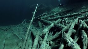 Fragments of trees and grass in underwater landscape of Fernsteinsee lake. Beautiful emerald green alpine attractions of nature of Fernpass in Nassereith Tyrol stock video footage