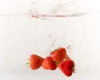 Fragola in acqua Fotografie Stock Libere da Diritti