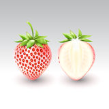 Fragola bianca di Pineberry e una metà della fragola bianca, frutta, trasparente, vettore Immagine Stock Libera da Diritti