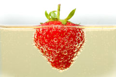 Fragola in Champagne Fotografia Stock