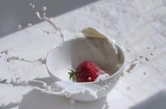 Fragola che spruzza nella tazza di latte Fotografie Stock Libere da Diritti