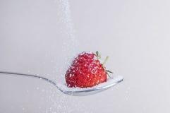 Fragola con zucchero Fotografie Stock