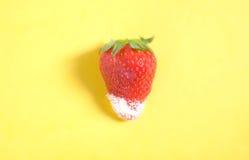 Fragola dello zucchero Fotografie Stock