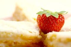 Fragola e biscotti Fotografie Stock Libere da Diritti