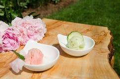 Fragola e gelato o sorbetto del cetriolo Immagini Stock
