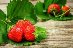 Fragola Fragola fresca Strewberry rosso Fragole senza bloccare poste nelle posizioni differenti fotografia stock