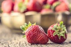 Fragola Fragola rossa Fragole raccolte fresche nelle posizioni differenti fotografia stock