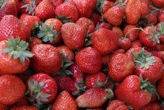 Fragola Fragole organiche fresche nella luce del giorno su un mercato Fruttifica il fondo Alimento sano Fondo della fragola Fotografia Stock