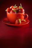 Fragola fresca su una zolla e su una tazza Fotografie Stock