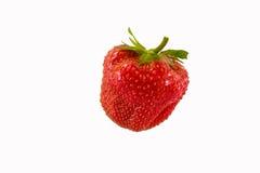 Fragola isolata su fondo bianco, fragola naturale rossa, alimento sano Immagine Stock Libera da Diritti