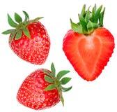 Fragola isolata su priorità bassa bianca Intero strawber maturo rosso Fotografia Stock