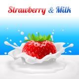 Fragola in latte Fotografia Stock Libera da Diritti