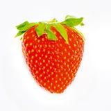 Fragola rossa della bacca isolata su fondo bianco Fotografia Stock Libera da Diritti