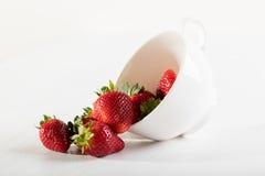 Fragola succosa in tazza bianca della porcellana Immagine Stock