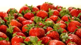 Fragole stock footage