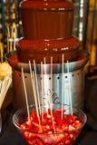 Fragole alla fontana del cioccolato fotografia stock libera da diritti