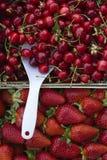 Fragole e ciliege Immagini Stock