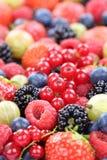 Fragole fresche della raccolta delle bacche delle bacche, mirtilli Immagini Stock