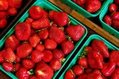 Fragole fresche di estate del mercato dei coltivatori Immagine Stock Libera da Diritti