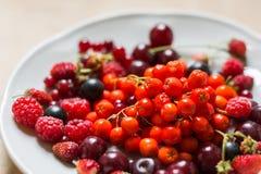 Fragole, lamponi, rosso e ribes nero, ciliegia, bacche di sorbo in un piatto Immagine Stock