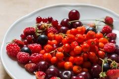 Fragole, lamponi, rosso e ribes nero, ciliegia, bacche di sorbo in un piatto Fotografia Stock