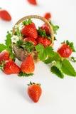 Fragole mature fresche con le foglie ed il fiore Immagini Stock