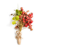 Fragole mazzo delle bacche e delle foglie della fragola di bosco isolate su fondo bianco Immagine Stock