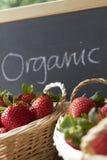 Fragole organiche da vendere Fotografia Stock Libera da Diritti