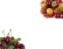 Fragole, ribes rosso, albicocche e ciliege maturi su fondo bianco Immagini Stock Libere da Diritti