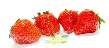 Fragole rosse immagine stock