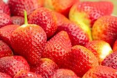 Fragole rosse fresche Fotografia Stock Libera da Diritti