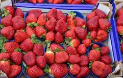 Fragole rosse mature dei canestri coltivate facendo uso delle tecniche di orga Fotografie Stock Libere da Diritti