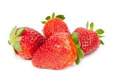 Fragole rosse mature su fondo bianco isolato Fotografia Stock