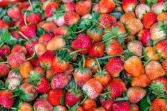 Fragole succose naturali fresche sul mercato di strada Fotografia Stock