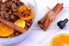 Fragrância da aromaterapia da laranja Saúde e beleza, ainda conceito da vida Fotos de Stock Royalty Free