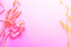 Fragrância da mulher em uma garrafa de vidro em um fundo cor-de-rosa, um presente para uma menina Fotografia de Stock