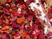 A fragrância de Grasse fotografia de stock royalty free