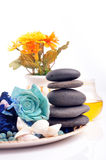 Fragrance collection Royalty Free Stock Photo