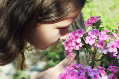 Fragrance of flowers Royalty Free Stock Image