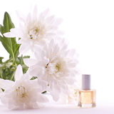 Fragrance oil. And flowers isolated on white background Stock Images