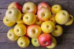 Fragrant autumn apples Royalty Free Stock Photos