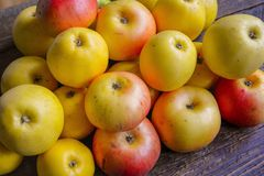 Fragrant autumn apples Royalty Free Stock Images