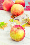 Fragrant autumn ripe apple Royalty Free Stock Images