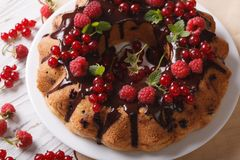 Fragrant berry sponge cake with chocolate close-up Royalty Free Stock Image