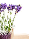 Fragrant bouquet of lavender flowers in glass vase Royalty Free Stock Photography