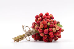 Fragrant bouquet of ripe strawberry Royalty Free Stock Photos