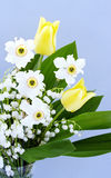Fragrant bouquet Royalty Free Stock Photos